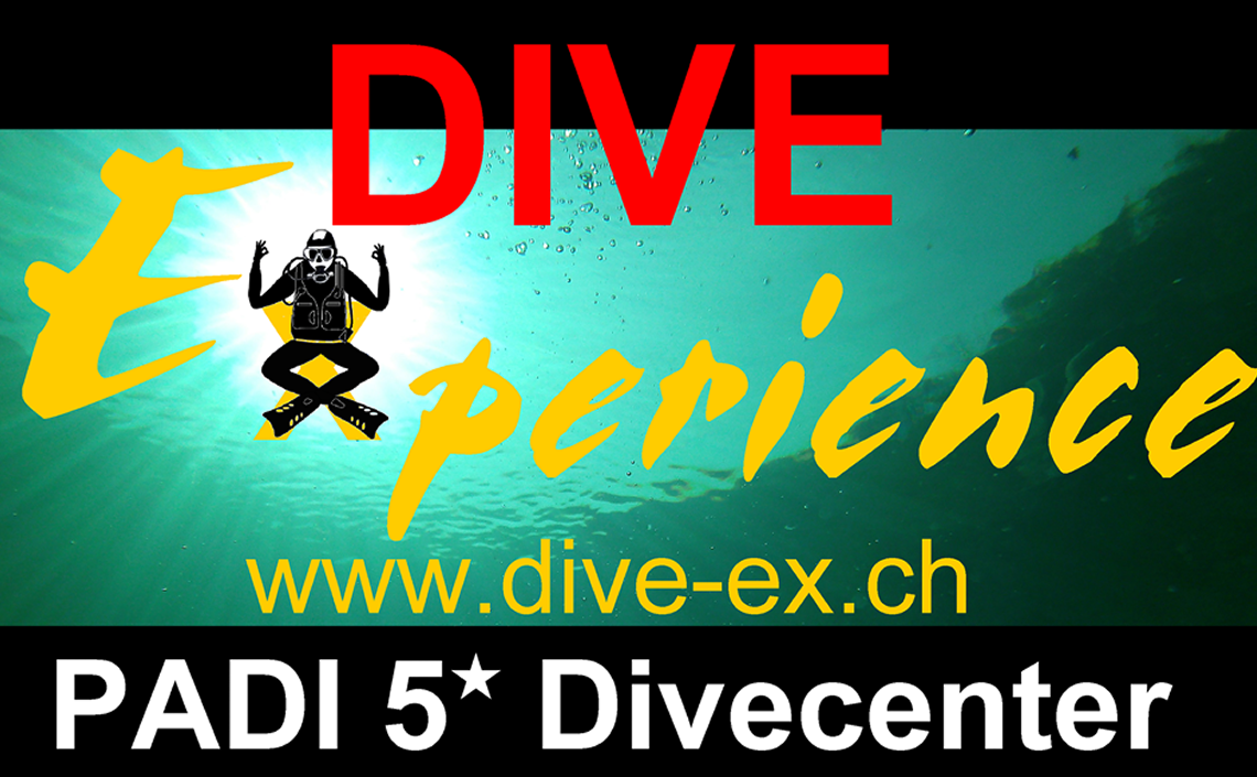 DiveExperience.png